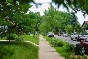 photo of tree-lined street and sidewalk